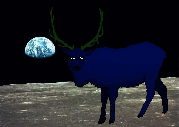 Moon elk