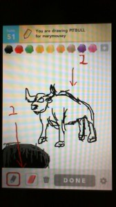 2012 04Apr 6 B Draw something! - Pitbull